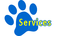 Dog, Sitting, Pet, Boarding, Doggie Daycare, kennel, family, weekly, friendly, safe, stress less, caring, play, running, yard, secure, experience, training, daycare, professional, Paws Abilities, indoor kennel, private, nature, walks, bath, farm, Lanesboro, Preston, Fountain, Harmony, Whalan, Peterson, Rushford, Wykoff, Canton, Spring Grove, Mabel, St. Charles, Eyota, Root River, Camping, Commonweal Theatre, vacation, traveling, dog grooming, Veterans cemetery, Old Bard Resort, Country Trails Inn, Trail Head Inn, Bread and Breakfast, B&B, Tours, Amish, Niagara Cave, Historic Forestville, Stone Mill Suites, Bike Rental, Kayaking, Canoeing, Fishing, Tubing, Safety, Lanesboro Arts, Rochester, Mayo Clinic, Doctoring, Lodging Mayo, Eagle Bluff Environmental Learning Center, Museum, Golfing, Buffalo Bill Days, Gammel Dag Fest, Rushford Days, Winona, Houston, La Crosse, I90, Whalan Stand Still Parade, Aroma Pie Shop, Large, small, miniature, furry, canine, fetch, play, outdoor, indoor, contained, country